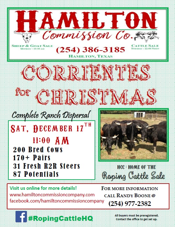 corrientes-for-christmas2