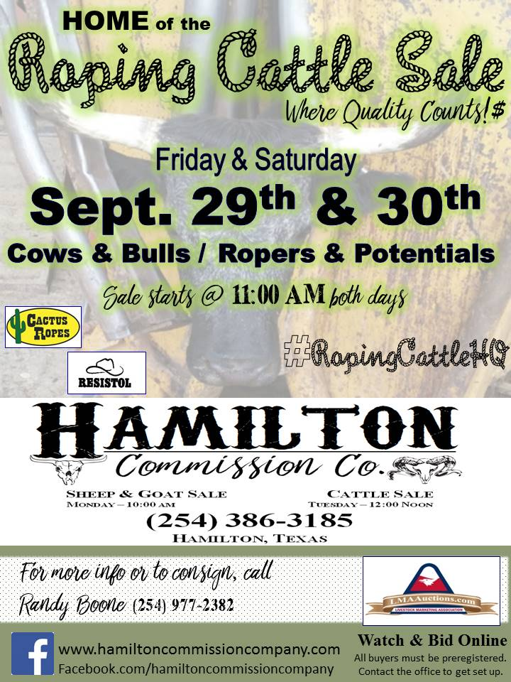 RopingCattleSale Sep 2017